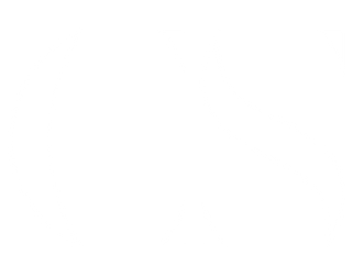 CS-White-Transparent-02.png
