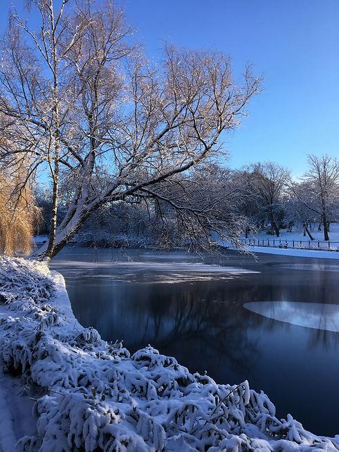 Snow_Series1.jpg