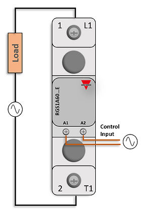 RGS1A AC Input.jpg