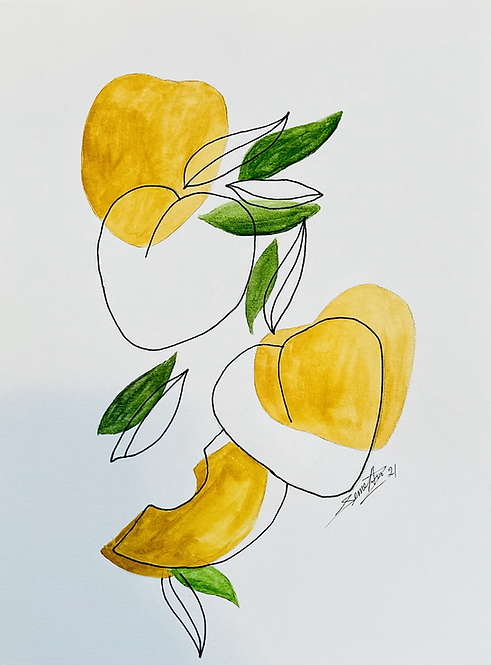 Apricots Line Art