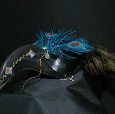 Peacock Raven