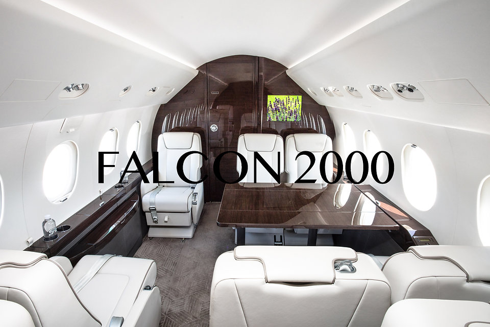 Falcon2000.jpg