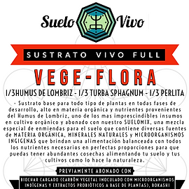 SVfull nuevo (1).png