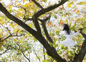 [PRESS RELEASE] フェミニンケアブランド『明日 わたしは柿の木にのぼる