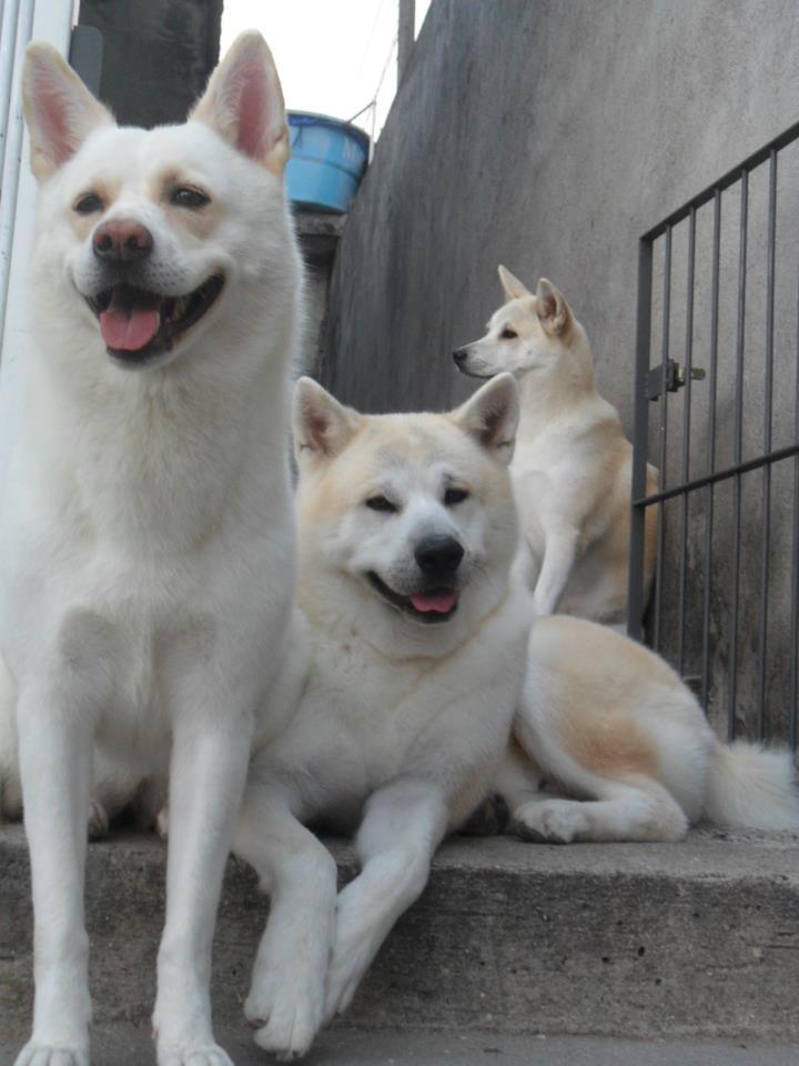 Nina, Beny, Hanna