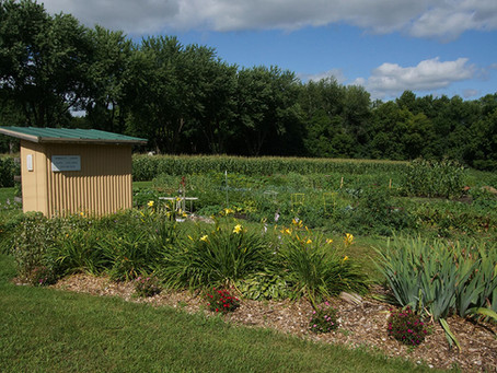 Cokato Community Garden