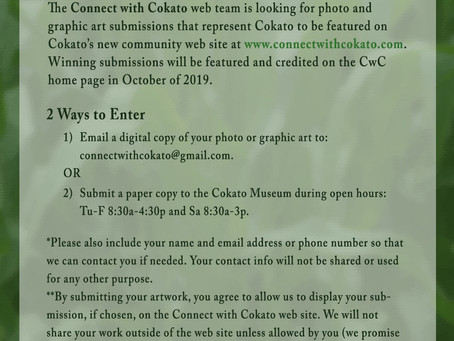Connect with Cokato Contest