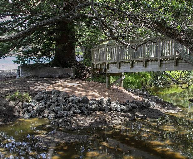 Reid Bridge-6.JPG