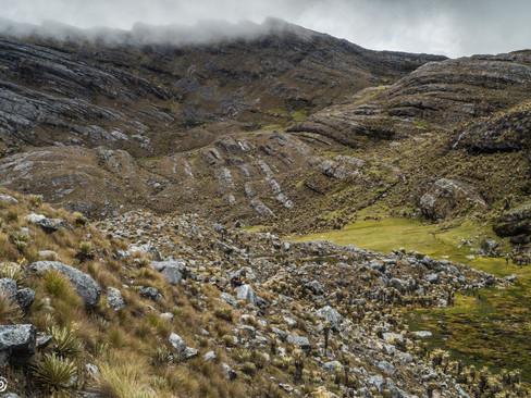 Valle de frailejones en Zizuma, Sierra Nevada del Cocuy y Güicán