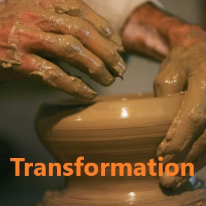 Transformation - Transformed for Significance