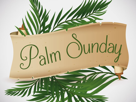 Palm Sunday - Dealing with Disappointment