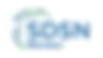 SDSN_logo_RGB-web.png
