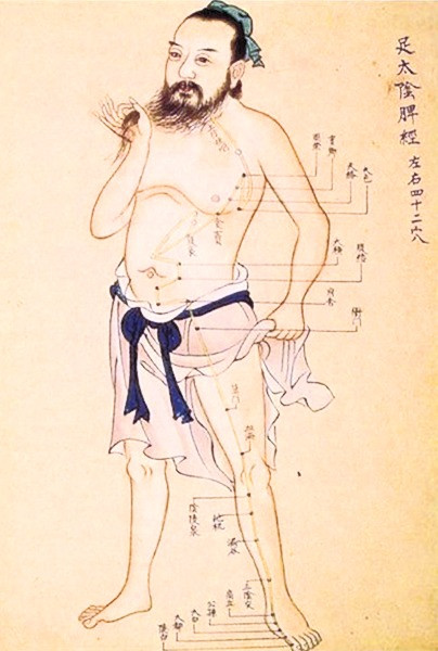 Chinese medicine acupuncture chart