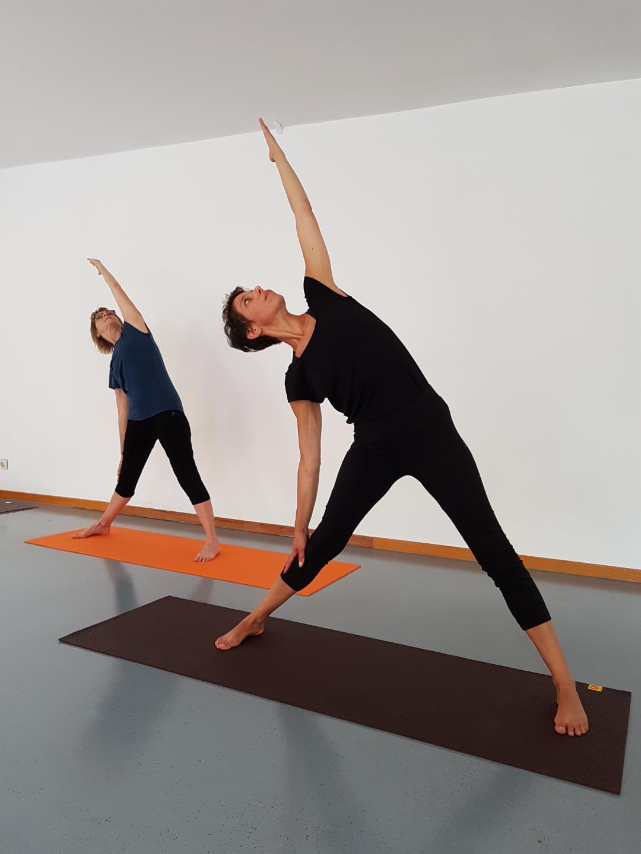Hatha Yoga avec Sylvie - en présentiel