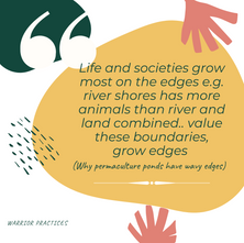 Permaculture: Promoting life