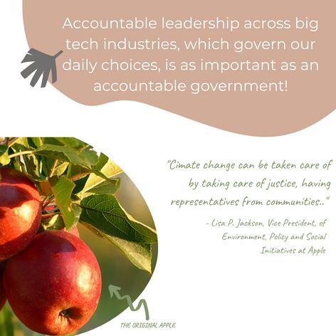Accountability of the companies