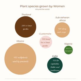 Women growing various plants