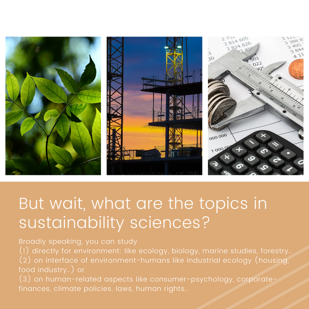 what are the topics in sustainability sciences