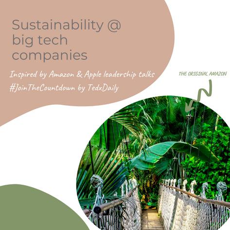 Sustainability @big tech companies
