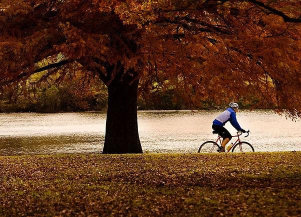 cycling in the fall_ny.jpg