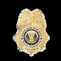 GMMBPF Chairman Badge 2020.png