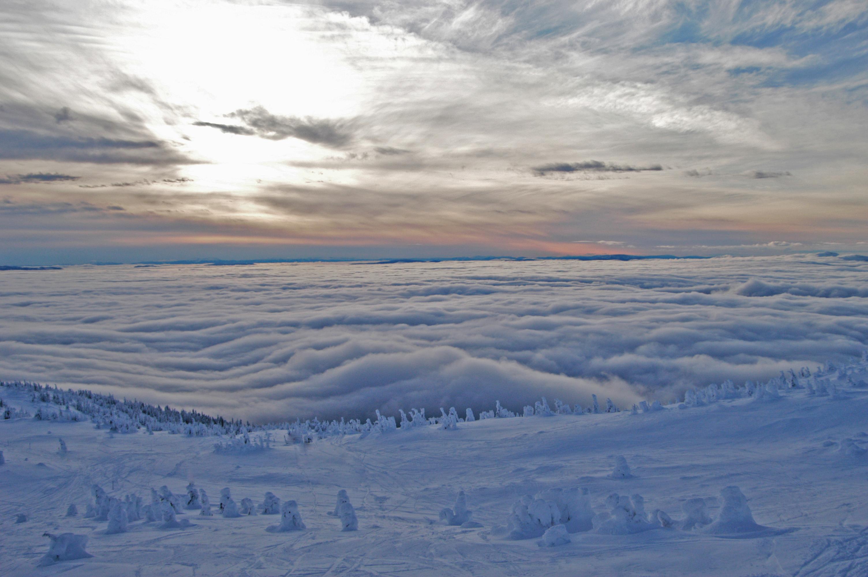 Big White's famous Snowghosts