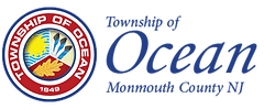 2020 Friends web Ocean Twp logo.png