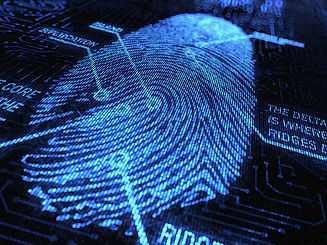 fingerprint cc by-nd Lic.jpg