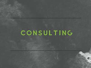 WEBSITEICONSconsulting.png
