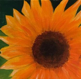 s-sjoberg-sunflower-detail-LR.jpg