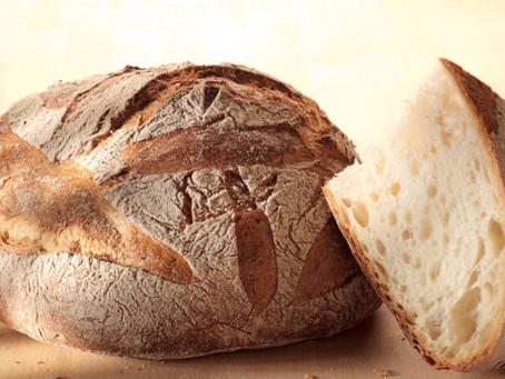 Bread of Tomorrow