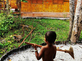 There was no rest for Ray to protect from daring lemurs our bungalow at Palmarium Hotel