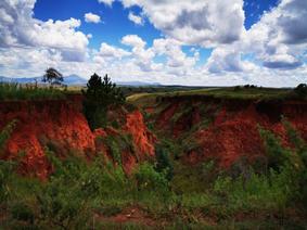 Broken soil due to deforestation