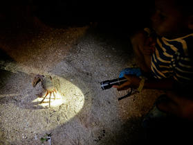 Ray with the torch and a crab in the night