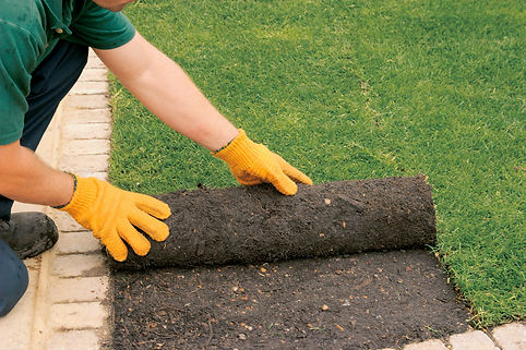 Sod Laying Services