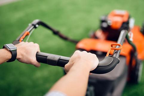 Grass & Lawn Cutting