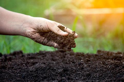 Garden Soil Selection