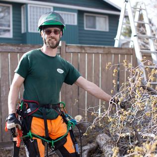 Tree Services Calgary - 48 - Evergreen L