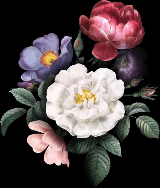 Floral Burst R.png