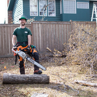 Tree Services Calgary - 47 - Evergreen L
