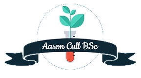 BSC Icon (1).png