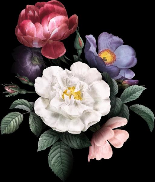 Floral Burst.png