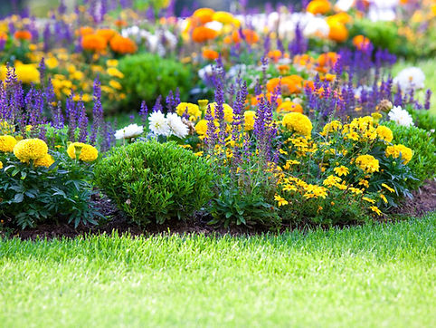 Ground Flower Beds