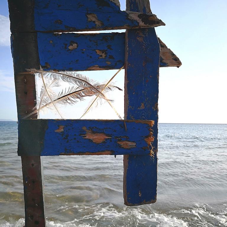 Wege zur Glückseligkeit: Meer, LandArt, Wanderungen, Flora und Fauna (1)