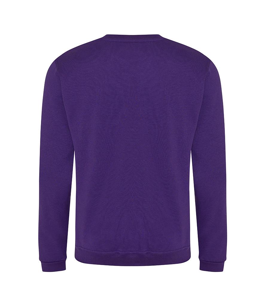 CMY301 Purple Back