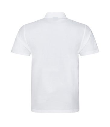 CMY101 White Back