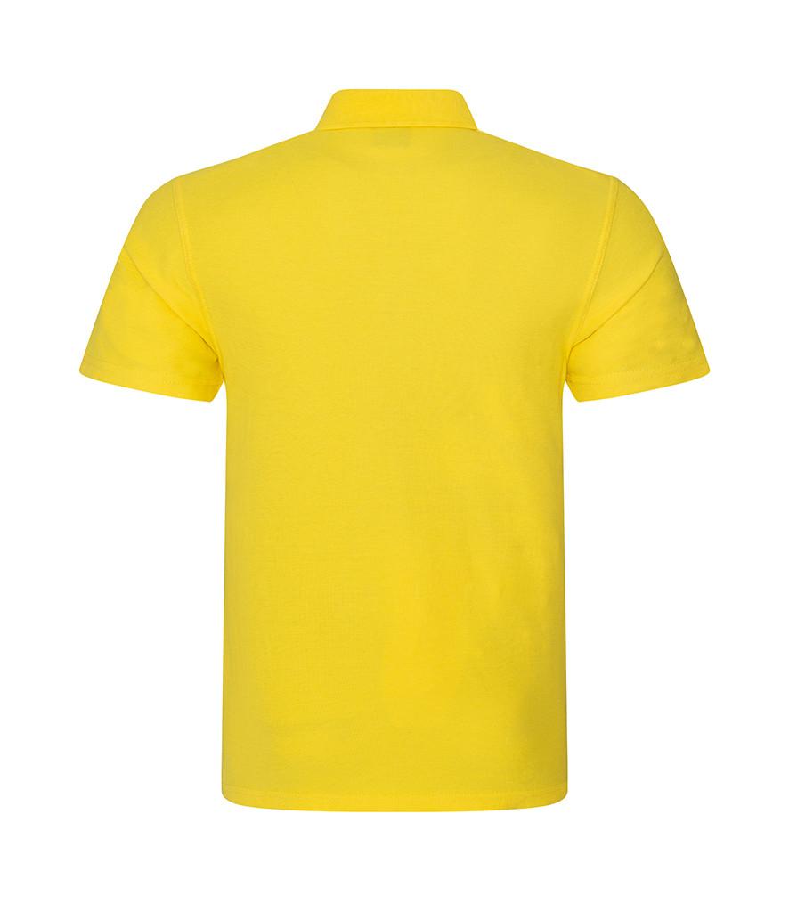 CMY101 Yellow Back