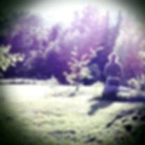 CameraBag_Photo_1001.jpg