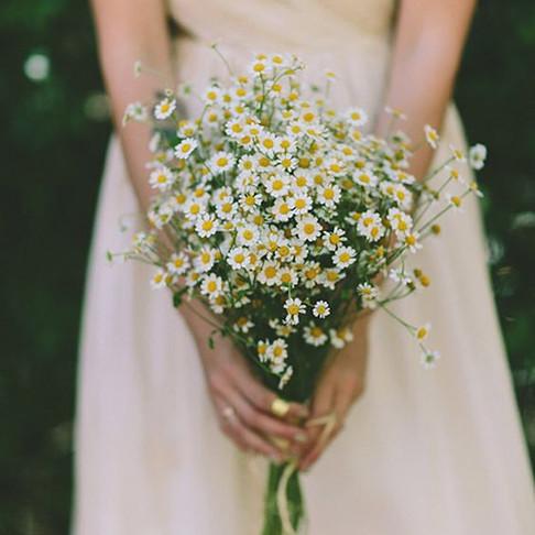 Inspiração: Margaridas no Casamento