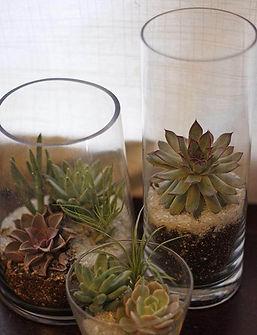 DIY-Succulent-Glass-Planter.jpg